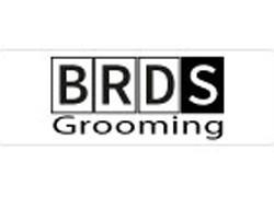 Beards Grooming